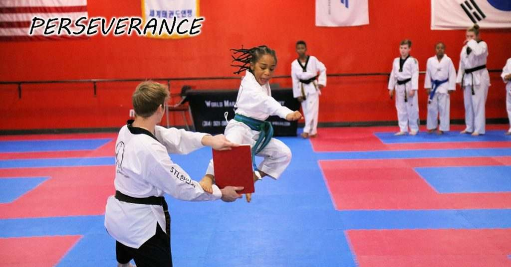 2 1024x536, World Martial Arts Academy Hazelwood