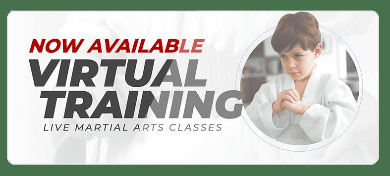 VIRTUALPOPUPSPARK.1.1, World Martial Arts Academy Hazelwood